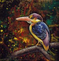 Oriental Dwarf Kingfisher by TumblingTortoises