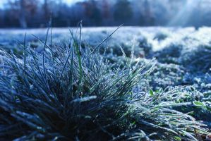 Frost by Prestige-Photography