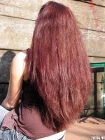 My crazy hair color - 04 by WilhelminaH