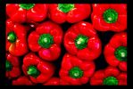 Capsicum Annum by GeorgiK