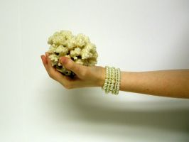 Hand with Coral Stock8 by NoxieStock