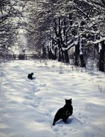 White garden with cats. by Safiru