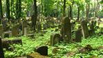 Jewish Cemetary 1 by ciabox