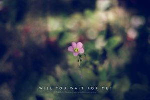 will you wait for me? by lalitkala