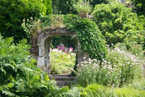 The Garden Arch by Cynnalia-Stock