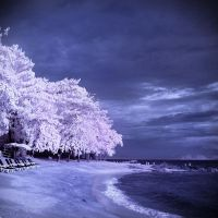 Low Season - infrared by MichiLauke