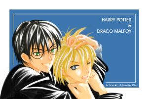 HP-Harry n Draco by Kairei