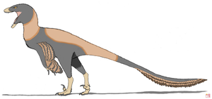 Dakotaraptor steini by King-Edmarka