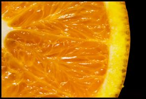 009-365 Citrus sinensis by mr-MINTJAM