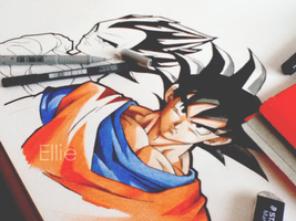 :Goku and Vegeta by FreedomforGoku