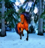 wild horse winter by whitewinewoman