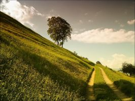 north italy rural by mantrasiva