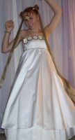 Princess Serenity costume by SailorEarth316