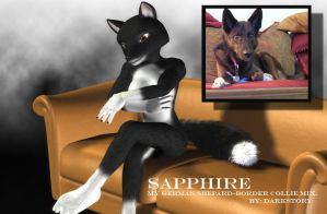 Sapphire, my dog ANTHRO STYLE by DarkStory