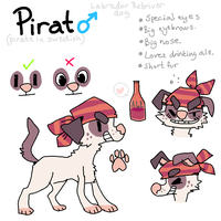 Pirat Ref Sheet 2013 by Smushey