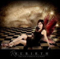 Rebirth--- by feel-green