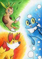pokemon x and y starters by BlueSpirit12