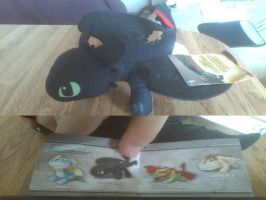 How To Train Your Dragon 2 Toothless Plush by PokeLoveroftheWorld