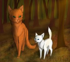 Fireheart and Cloudpaw by Kokolana