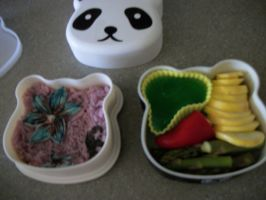 Todays bento by HarvesterofPearls