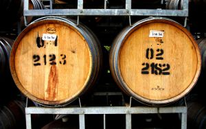 Wine Barrels by xephon45