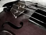 Gothic Violin. by ELogan-Photography