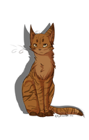 Lionblaze by crashez