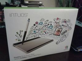 Wacom Intuos Pen and Touch by Rebow19