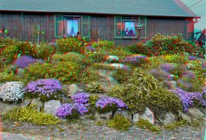 Rockery :: Anaglyph HDR 3D :: by zour