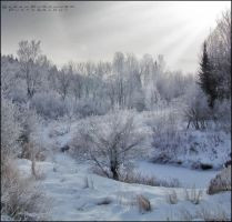 The Land of Frost by Sarah--Lynne