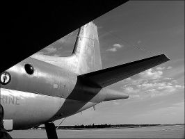 The Plane by MrSpring