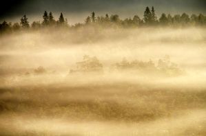 8.9.2014: Land of Fog and Forests by Suensyan