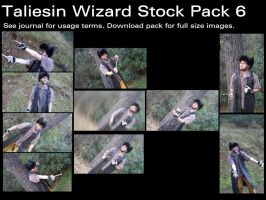 Taliesin Wizard Stock Pack 6 by Durkee341