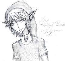 Link by Pandalovesu2