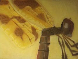 Class Projects: Pastel Dragonfly by OffDinosaurus