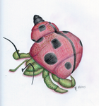 Animal Portrait Practice - Ladybug Unicorn by elphaba-rose-wilde
