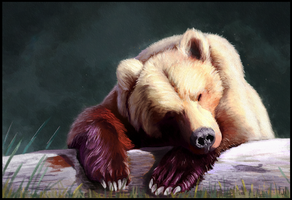 Sleepy Bear by ArtofJefferyHebert