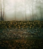 Premade Background 39 by maiarcita