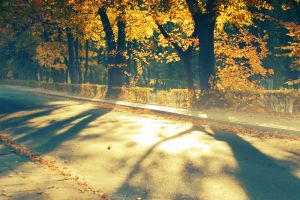 best autumn by all17