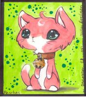 Pink Kitten What Else by Willow-Pendragon