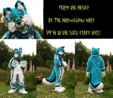 Furya the husky is DONE! by Mariannj