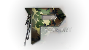 PULSE Logo Country by FoggedOut