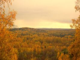 Autumn in Latvia 2 by snowmarite
