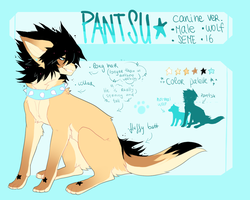 PANTSU canine ref by toypenis