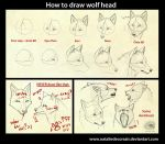 Wolf head tutorial by NatalieDeCorsair