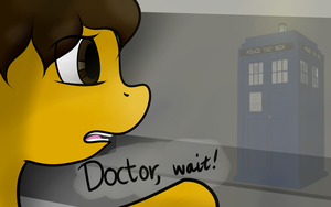 Doctor, wait! by TheBronyCorner