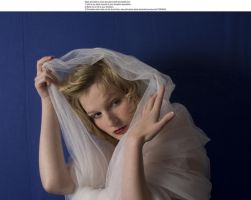 Swan 6 by almudena-stock