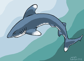 Shark Week Sketch Jam 2012: Oceanic Whitetip by redmetz