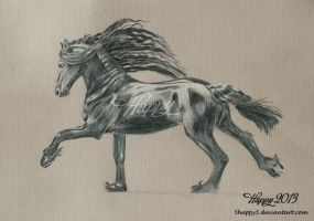 Black Horse by 5Happy5