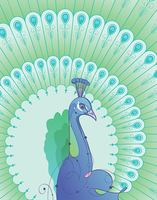 Peacock by rubenslp